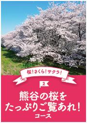 桜!さくら!サクラ!熊谷の桜をたっぷりご覧あれ!コース