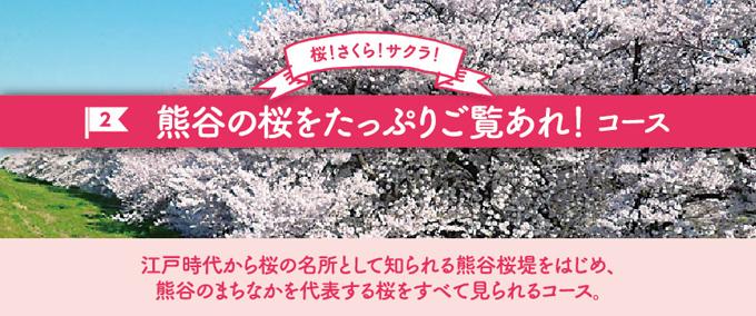 熊谷の桜をたっぷりご覧あれ!コース