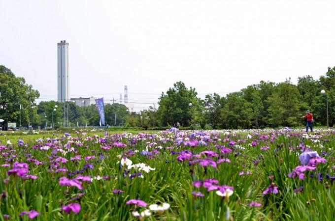 別府沼公園