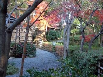秋の星渓園
